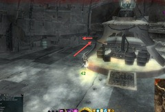 gw2-lobber-doger-achievement-guide-4