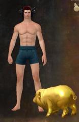 gw2-mini-golden-pig-2