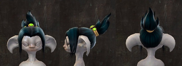 gw2-april-14-new-hairstyles-asura-male-2