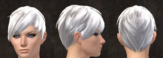 gw2-april-14-new-hairstyles-norn-female-2