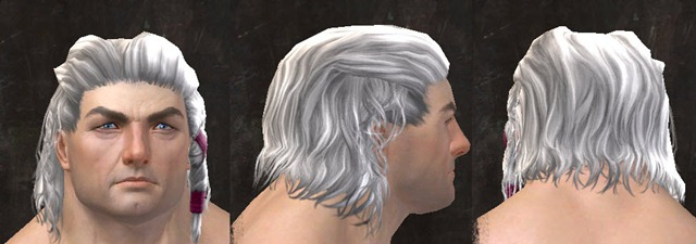 gw2-april-14-new-hairstyles-norn-male-1