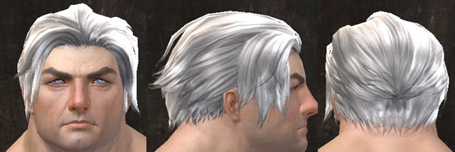 gw2-april-14-new-hairstyles-norn-male-2