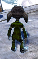 gw2-exemplar-attire-outfit-gemstore-asura-male-3