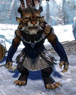 gw2-exemplar-attire-outfit-gemstore-charr-female-4