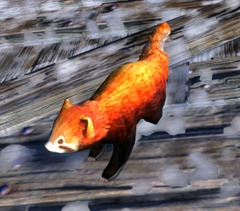 gw2-mini-red-panda-2