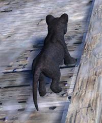 gw2-mini-jaguar-cub-2