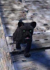 gw2-mini-jaguar-cub