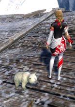 gw2-mini-polar-bear-cub-3