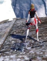 gw2-mini-snow-cougar-cub-3