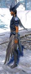 gw2-dwayna's-regalia-outfit-human-male-2