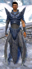 gw2-dwayna's-regalia-outfit-human-male-nohelm