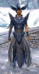 gw2-dwayna's-regalia-outfit-human-male