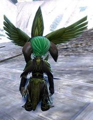 gw2-dwayna's-regalia-outfit-male-asura-3