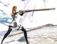 gw2-gallant-rifle-3