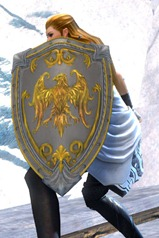 gw2-gallant-shield-3