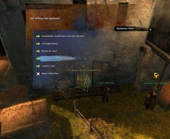 gw2-lion's-arch-exterminator-achievement-guide-eastern-ward-18