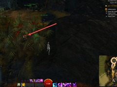 gw2-lion's-arch-exterminator-achievement-guide-white-crane-terrace-2