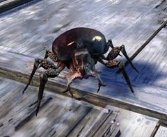 gw2-mini-beetle