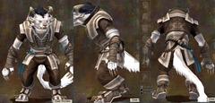gw2-monk's-outfit-charr-male