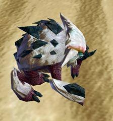 swtor-albino-bolraida-pet-2