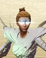 swtor-dynamic-brawlers-helm