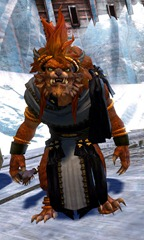 gw2-wedding-attire-charr-male