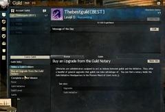 gw2-guild-main-panel-2