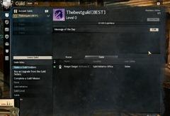 gw2-guild-main-panel