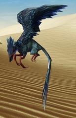 swtor-stormcloud-flutterplume-pet