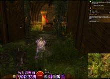 gw2-a-study-in-gold-herta-tablets-guide-18