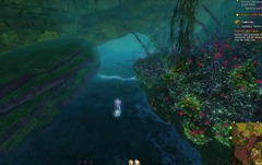 gw2-guano-incubed-spider-eggs-hero-point-tangled-depths-4