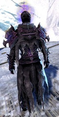 gw2-lunatic-guard-outfit-sylvari-male-3