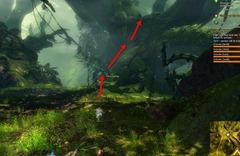 gw2-no-masks-left-behind-achievement-guide-arrowhead-vale-4
