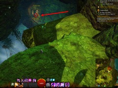 gw2-no-masks-left-behind-achievement-guide-bristleback-chasm-2