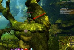 gw2-no-masks-left-behind-achievement-guide-bristleback-chasm-3