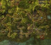 gw2-no-masks-left-behind-achievement-guide-chak-hollow-3