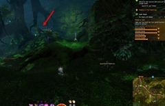 gw2-no-masks-left-behind-achievement-guide-chak-hollow-4