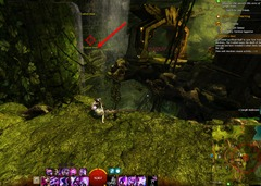 gw2-no-masks-left-behind-achievement-guide-eastwatch-bluff-2