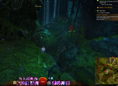 gw2-no-masks-left-behind-achievement-guide-griffonfall-2