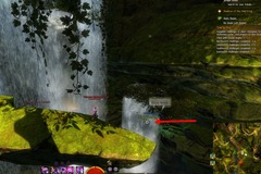 gw2-no-masks-left-behind-achievement-guide-maguuma-shallows-4