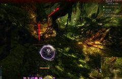 gw2-no-masks-left-behind-achievement-guide-morwood-wilds-4