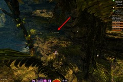 gw2-no-masks-left-behind-achievement-guide-mossheart-walk