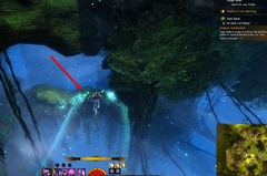 gw2-no-masks-left-behind-achievement-guide-tarnished-treetop-3