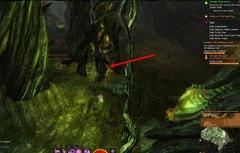 gw2-verdant-brinks-insight-the-corpse-grove-3