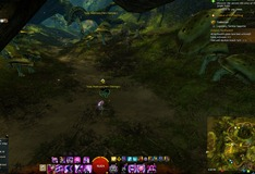gw2-young-mushrooms-hero-point-auric-basin