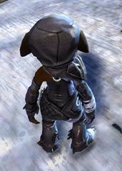gw2-bandit-sniper-outfit-asura-female-3