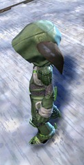 gw2-bandit-sniper-outfit-asura-male-2