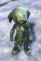 gw2-bandit-sniper-outfit-asura-male