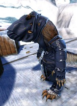 gw2-bandit-sniper-outfit-charr-female-2