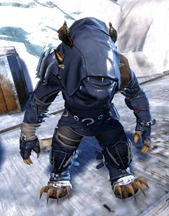 gw2-bandit-sniper-outfit-charr-female